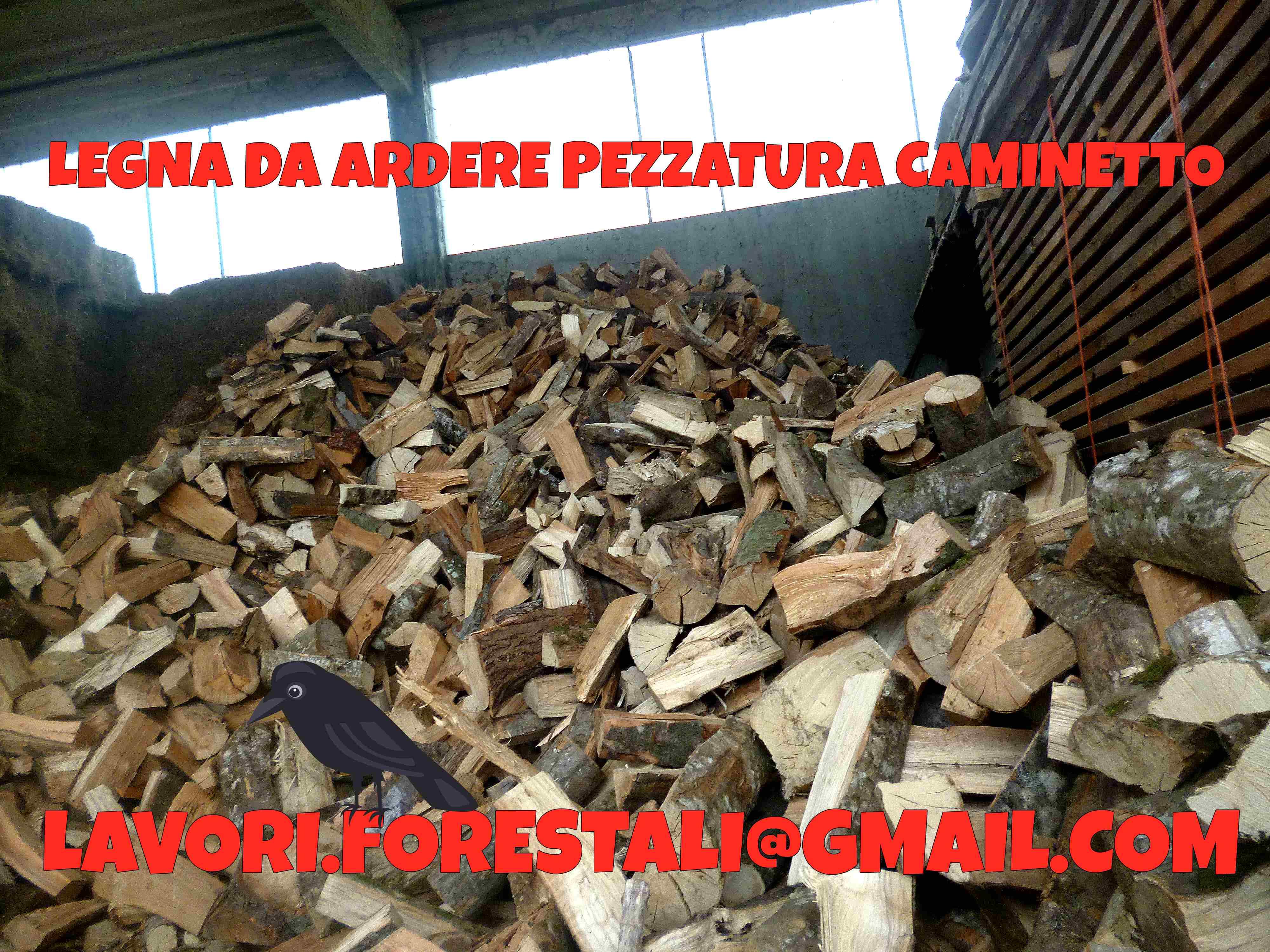 Vendesi pellet a euro legna da ardere tronchetti for Legna da ardere prezzi